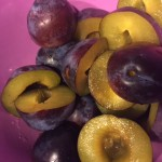 Plums cut along the circumference